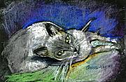 Domestic Animals Pastels - Michael Campbell by Arline Wagner
