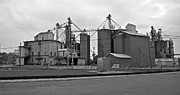 Michigan Agricultural Commodities 2094 Print by Michael Peychich
