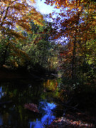 Michigan Fall Colors Posters - Michigan Fall Colors 3  Poster by Scott Hovind