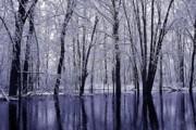 Scott Hovind - Michigan Winter 11