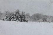 Scott Hovind - Michigan Winter 16