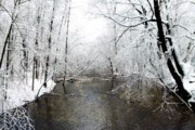 Scott Hovind - Michigan Winter 17