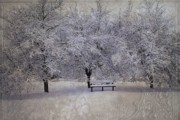 Freezing Prints - Michigan Winter 4 Print by Scott Hovind