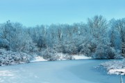 Ice Trees Prints - Michigan Winter 6 Print by Scott Hovind