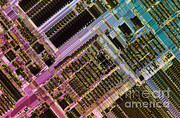 Integrated Framed Prints - Microprocessors Framed Print by Michael W. Davidson
