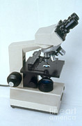 Microscope Posters - Microscope Poster by Science Source