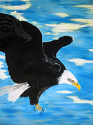 American Eagle Paintings - Mid flight by Gonen Yohananof