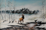 David Paul - Mid Winter Elk in Snow