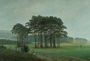 Green Pasture Posters - Midday Poster by Caspar David Friedrich
