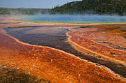 Yellowstone National Park Prints - Middle hot springs Yellowstone Print by Garry Gay