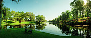 Middleton Prints - Middleton Place Lagoon Print by Jan Faul
