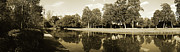 Middleton Prints - Middleton Place Swan Pool Print by Jan Faul