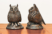 Owl Sculpture Metal Prints - Midget Owls Bronze Sculpture feathures wings beak legs  Metal Print by Rachel Hershkovitz