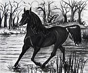 Stallion Drawings - Midnight And The Butterfly by Toni  Thorne