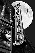 Old Theater Framed Prints - Midnight at The Orpheum - San Francisco California - 5D17991 - Black and White Framed Print by Wingsdomain Art and Photography