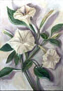 Datura Painting Prints - Midnight Ghost Print by Randy Burns