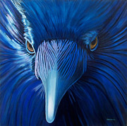 Birds Of Prey Paintings - Midnight Magic by Brian  Commerford