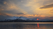 Sunset In Norway Metal Prints - Midnight Sun Over Tjeldsundet Strait Metal Print by Arild Heitmann
