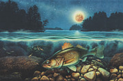 Lodge Painting Prints - Midnight Walleye Print by JQ Licensing