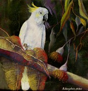 Cockatoo Originals - Midnight Watch by Sandra Sengstock-Miller