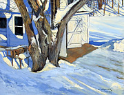 Kevin Mizner - Midwinter Maple