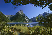 Rudi Prott Prints - Milford Sound  New Zealand Print by Rudi Prott
