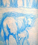 Mountain Valley Drawings - Milking Cow by Josie Weir