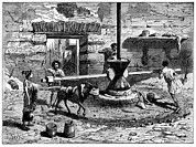 Slaves Photos - Milling Flour, Historical Artwork by Cci Archives
