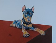 Pinscher Drawings Posters - Min Pin Poster by Jeff Moore