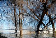 Water Reflections Photos - Mind of Descartes  by Steven Milner