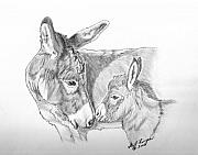 Donkey Drawings Framed Prints - Mini Donkey Mom and Baby Framed Print by Gail Finger