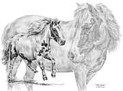 Miniature Drawings - Mini Magic - Miniature Horse Art Print by Kelli Swan
