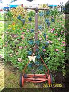 Garden Sculpture Framed Prints - Mini vinyard mower Framed Print by JP Giarde