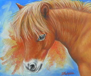 Miniatures Drawings - Miniature Pony In Pastel by Margaret Stockdale