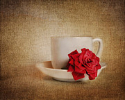 Jai Johnson - Miniature Red Rose I...