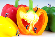 Fresh Food Digital Art Prints - Mining in colorful peppers Print by Paul Ge