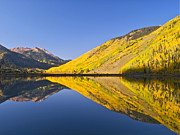 Red Mountain Framed Prints - Mirror reflections on Crystal Lake in Colorado Framed Print by Alex Cassels