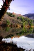 Water Scenes Metal Prints - Mirrored Metal Print by Emily Stauring