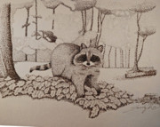 Raccoon Drawings - Mischief by Saundra Smoker