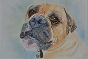 Boxer Painting Prints - Mischievous Boxer Print by Betty Mulligan