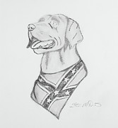 Duck Hunting Drawings - Miss Dixie by Stan McDaniel