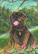 Staffordshire Bull Terrier Paintings - Miss Ripley by Suzanne Shepherd