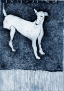 Lurcher Framed Prints - Missing Framed Print by Kathryn Siveyer