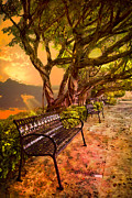 Benches Prints - Missing You Print by Debra and Dave Vanderlaan