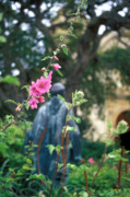 Flowers Photos Prints - Mission Statue and Flower Print by Kathy Yates