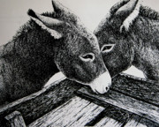 Farming Drawings - Missouri Mules by Lonnie Tapia