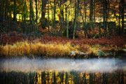 Mist Metal Prints - Mist On The Water Metal Print by Meirion Matthias