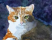 Cats Originals - Misty by Ally Benbrook