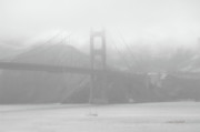 The Golden Gate Prints - Misty Bridge Print by Donna Blackhall