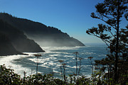 Silvery Posters - Misty Coast at Heceta Head Poster by James Eddy